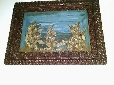 Antique DEEP 19th Century Hand Made Shadow Box Frame with Seascape Scene