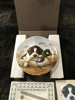 The Edwin M Knowles China Company; hunting, dog, springer spaniel