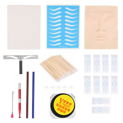 Microblading Permanent Makeup Eyebrow Tattoo Needle Pen Ink Practice Kit OB