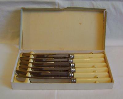 Boxed Set Six Stainless Steel & Ivorine Dinner Knives SM & Co Ltd Sheffield Made