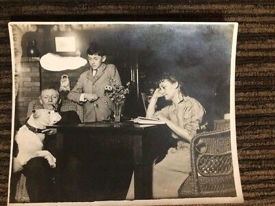 Vintage Antique Photo Pit Bull Dog Early 1900s Head On The Table With Family