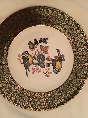 Collectible plate Wood & Sons Burslem England  decorative wall plate