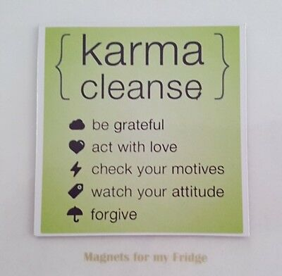 Karma Cleanse Quote Novelty Gloss Fridge Magnet - M212
