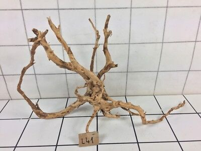 Red Moor Aquarium Wood Root Size L (Iwagumi Aquascaping Bogwood Driftwood)