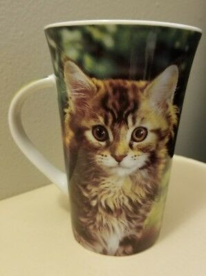 Cat Coffee Mug Kitten Kittens Cats Crazy Cat Lady Cat lives matter