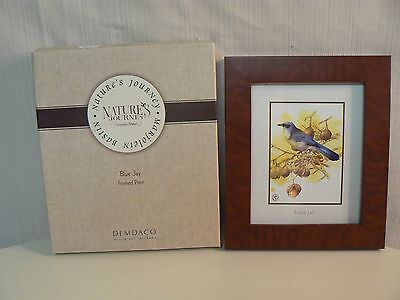 Demdaco BLUE JAY FRAMED PRINT #15772 NEW Marjolein Bastin - Nature's Journey