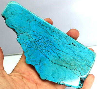 Hurry Up 1005Ct Certified Natural Magnificent Blue Turquoise Gems Rough AV1080