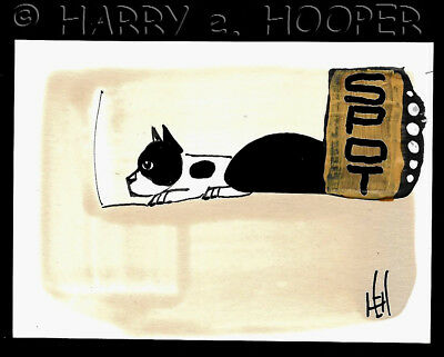 "hand painted  ACEO original art card * Harry e Hooper ""Boston 8""  terrier SPOT"