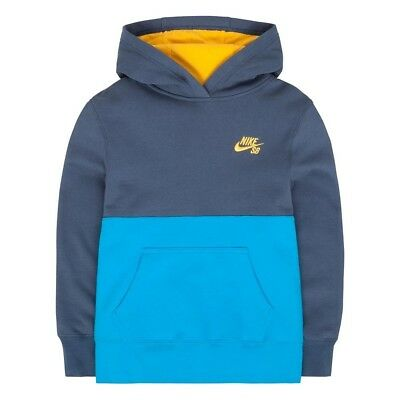 (Medium, BLUE GRAY) - Boys 8-20 Nike SB Fleece Hoodie. Huge Saving