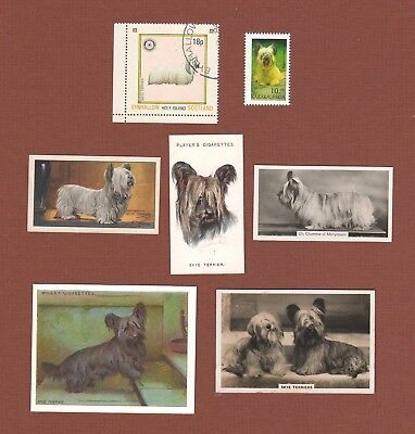 Skye Terrier dog  stamps and cigarette trade cards set of 7