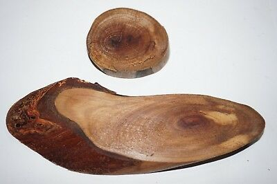 Iron bark, Sliced wood slices, Smooth finish & natural oil applied, Crafts, Arts