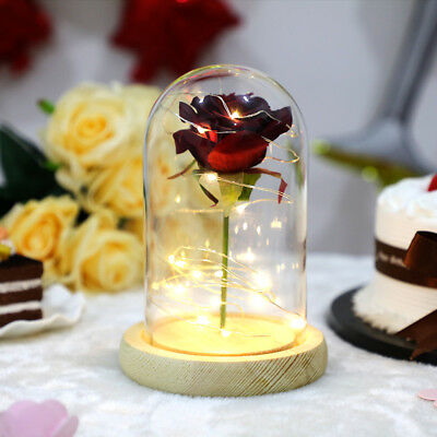 Beauty and the Beast Red Silk Rose and Led Light with Fallen Petals in a Glass