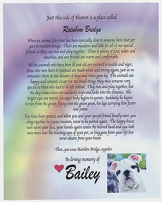 Rainbow Bridge Pet Loss Memorial Poem Only Dog Cat Personalized 8x10