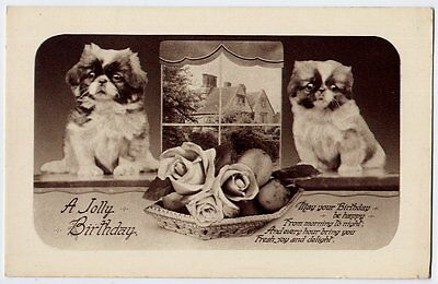 Tibetan Spaniels puppy dogs vintage birthday greetings Postcard - unused