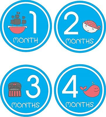 Personalised Monthly Baby Stickers, Milestone Stickers, Baby Shower Gift_B040