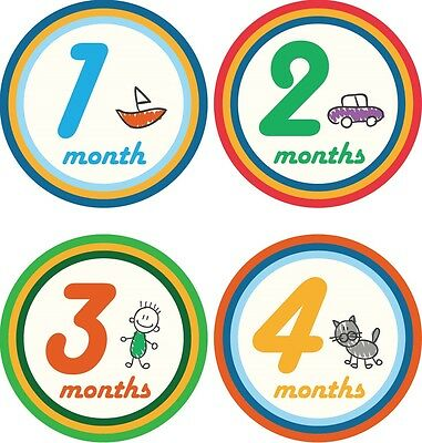 Personalised Monthly Baby Stickers, Milestone Stickers, Baby Shower Gift_B028