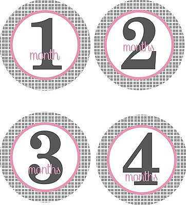 Personalised Monthly Baby Stickers, Milestone Stickers, Baby Shower Gift_G027