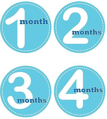 Personalised Monthly Baby Stickers, Milestone Stickers, Baby Shower Gift_B004