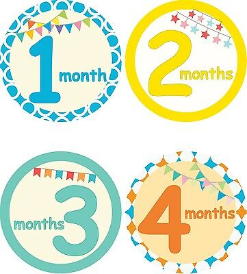 Personalised Monthly Baby Stickers, Milestone Stickers, Baby Shower Gift_B006