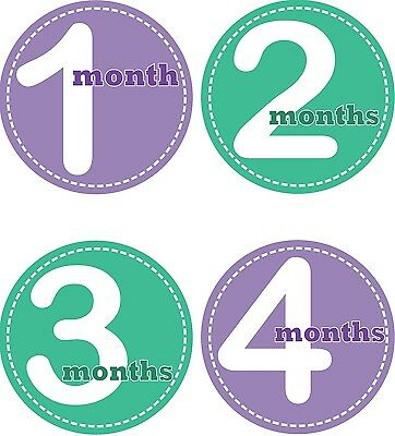 Personalised Monthly Baby Stickers, Milestone Stickers, Baby Shower Gift_G006
