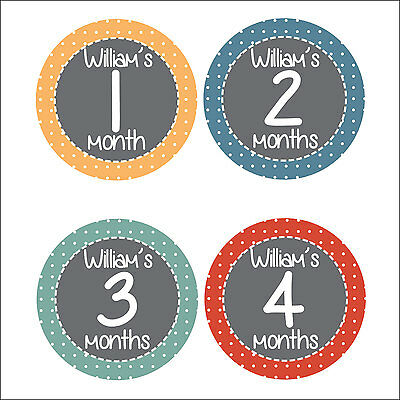Personalised Monthly Baby Stickers, Milestone Stickers, Baby Shower Gift_B015