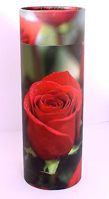 Adult Ashes Scattering Tube ,Biodegradable cremation funeral memorial Large,ROSE