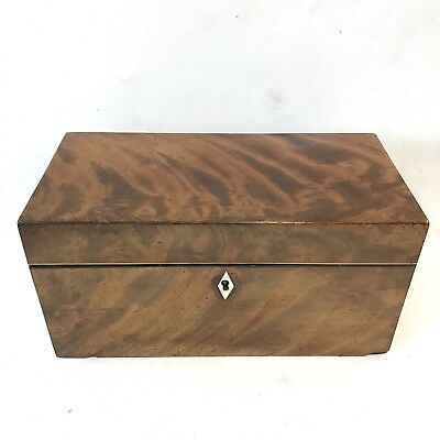Antique Regency Mahogany Tea Caddy Two Section Brass Handles Width 30.5cm