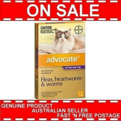 Advocate for Cats Over 4 kg 1 Pack Expiry 05/2020