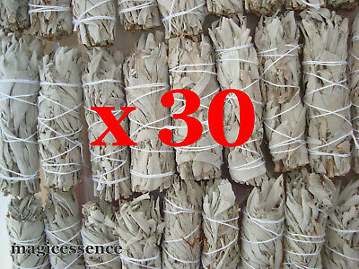 "Smudge Stick California White Sage - Mini 4"" (10-12cm) - BULK PACK of 30 Sticks"