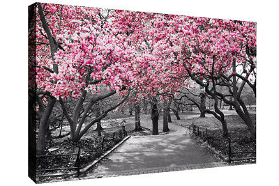 Black & White Wall Art Pink Blossoms Trees Canvas Wall Art Picture Print