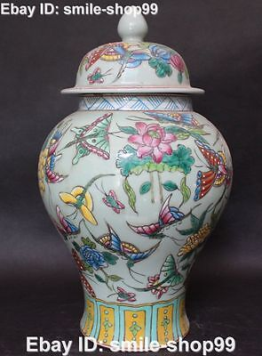 "16"" Chinese Wu Cai Porcelain Lotus Flower Grape butterfly General Pot Jar Crock"
