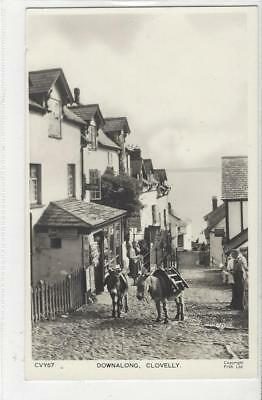 Donkey Postcard -Court -Frith - Clovelly