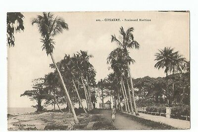 Cpa Afrique , Guinee , Conakry , Boulevard Maritime
