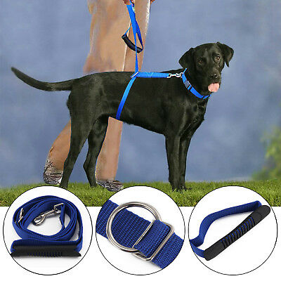 Lead Dog Leash Pet Walking Stop Pulling Training Supplies Instant Trainer Rope