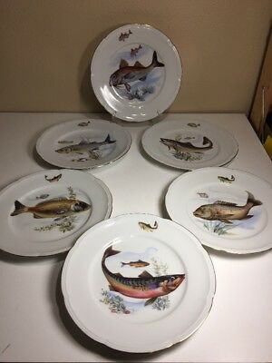"""6 Fish Plate Collection Bhm Germany-Bavaria Scalloped Gold Trim 10"""""""