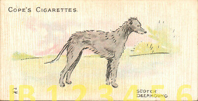 DOG Scottish Deerhound, Cecil Aldin Card, Small Scandinavian Trading Card 1912