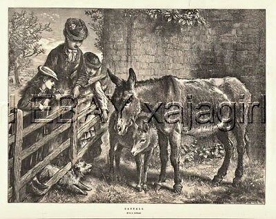 Donkey & Foal Greet Family, Large 1870s Antique Chromolith Print