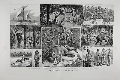 ELEPHANT Hunt Hunting in Sri Lanka Ceylon, Huge Double-Folio 1880s Antique Print