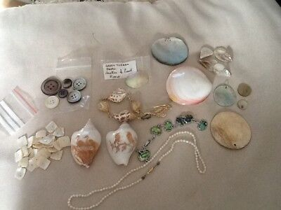 Mother of pearl lot, many different pieces. Pearl necklace. ( over 20 ) see pics