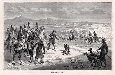 Falconry in Greyhound Dog & Arabian Horse, 1860s Engraving Print & Article