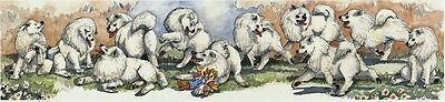 Enid Groves Samoyed Print