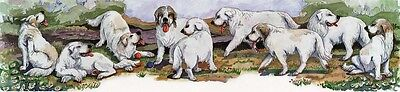 Enid Groves Great Pyrenees Print