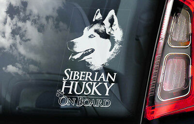 Siberian Husky on Board - Car Window Sticker - Huskie Sled Dog Sign Decal - V01
