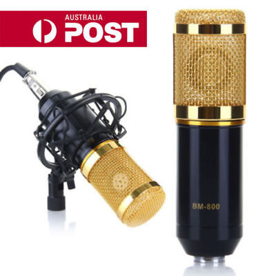 Professional Condenser Microphone Mic Broadcasting studio Recording +Shock Mount