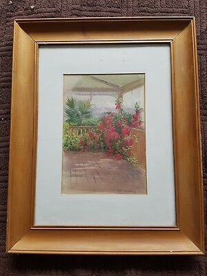 Antique  Watercolor Watercolour Framed 1920 Queensland Bouganvillia