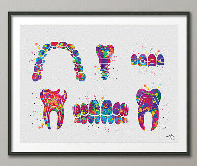 Dentist Art Watercolor Print Tooth Teeth Anatomical Dental Office Cabinet Decor