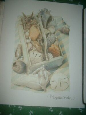 Marjolein Bastin Frameable 8x10 Mini Print Natures Sketchbook 2011 Sea Shells