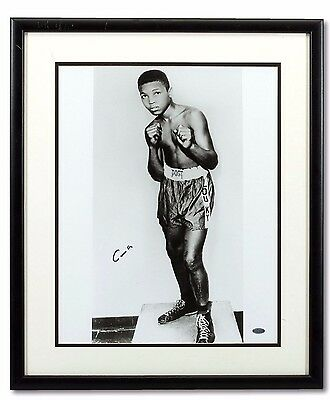 Muhammad Ali Autographed Cassius Clay Signed Golden Gloves Photo Framed Steiner