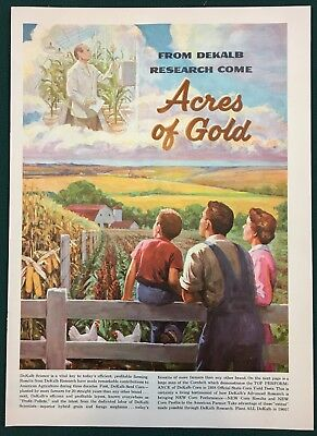 1960 DEKALB RESEARCH ACRES OF GOLD - Corn, Sorghum & Chix. Lg 4-pg insert ad.