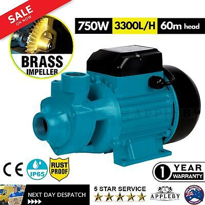 240V Water Pump 750W Electric High Pressure 3300L/H Pool Gardening Irrigation